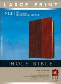NLT Premium Slimine Reference LP