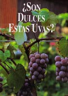 Tract: SPANISH JUSTAMINUTE Are These Grapes Sweet?