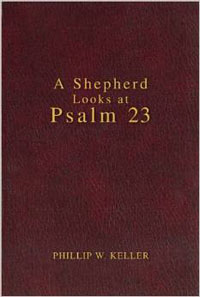Shepherd Looks At Psalm 23 (gift edition)*