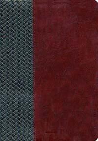 KJV Scofield Study Bible III  *