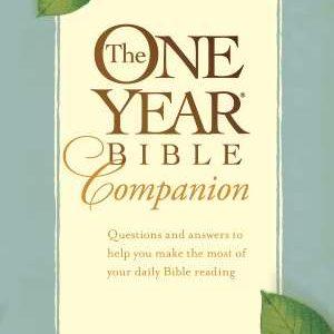 one year companion bible